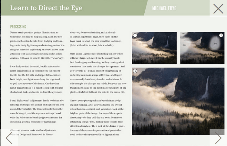 learn-to-direct-the-eye