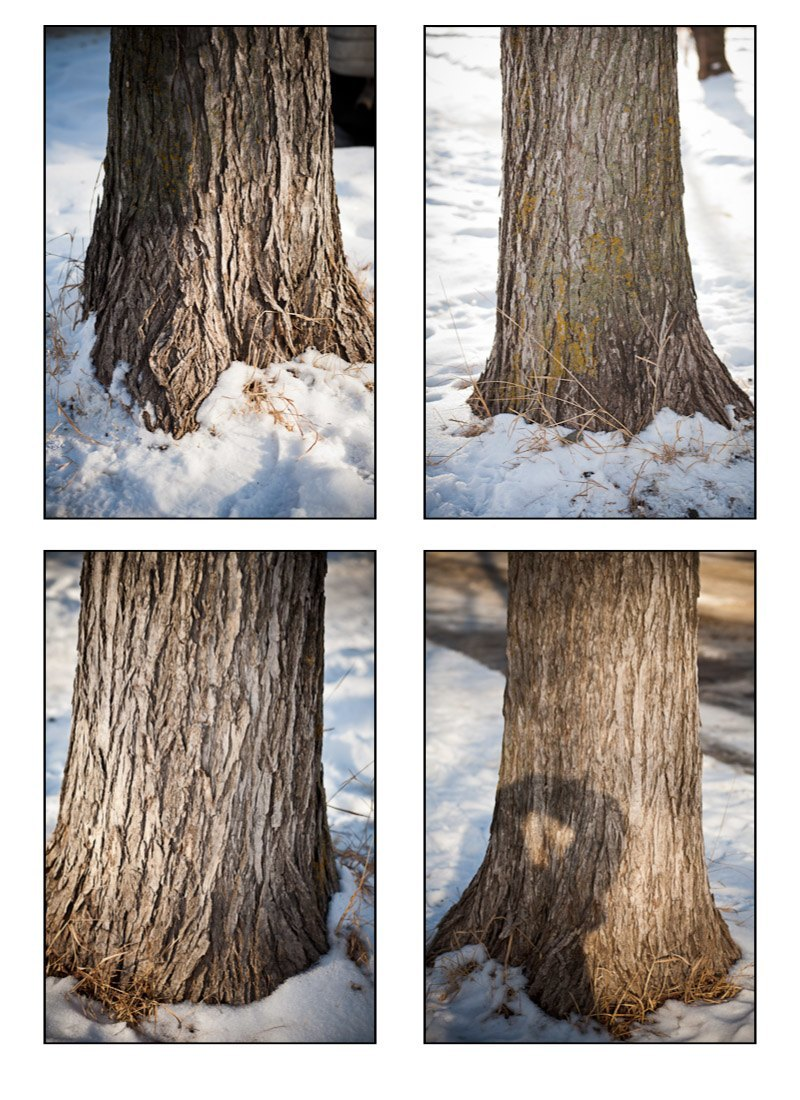 Image to start with you will need a relatively big wood texture - Now Can You See The Direction Of Light In Each Photo Do You See The Correlation Between Direction Of Light And Texture Let Me Help