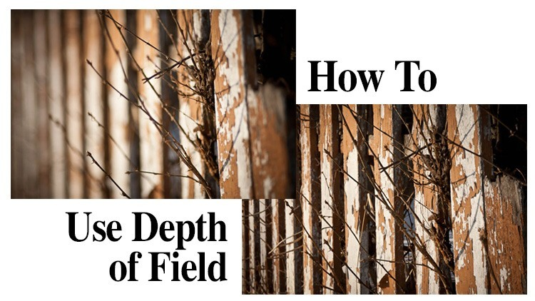 How to use Depth of Field