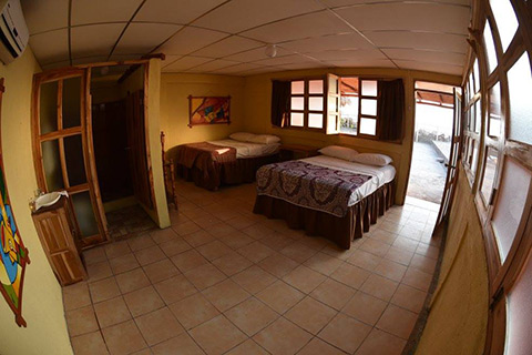a view of the rooms with two beds