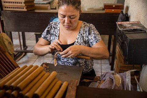 hand rolling a cigar in granada nicaragua