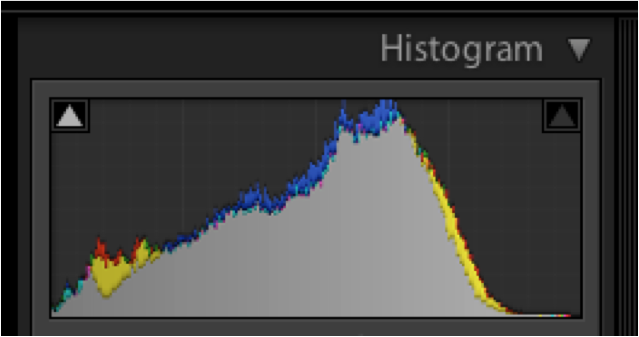 camera histogram showing grey