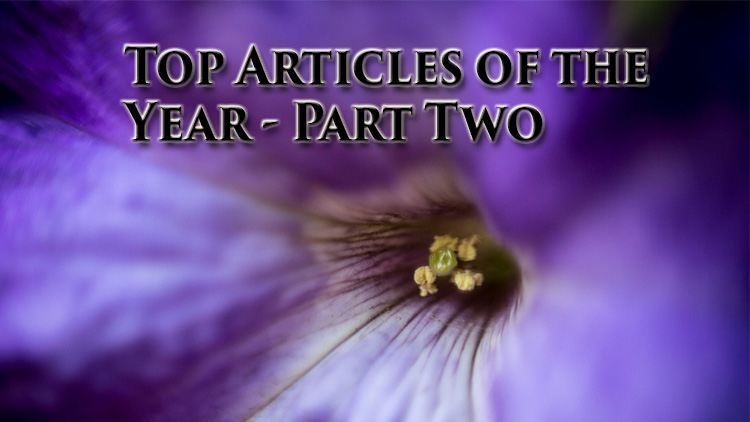 Top articles of the year – Part 2
