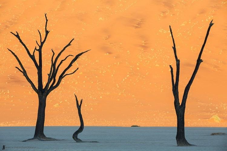 Namibia_20130513-martin-bailey