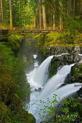 Sol Duc Falls years later