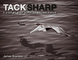 Tack Sharp Nailing Focus by James Brandon