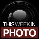 image-1-twip-podcast_logo_sans_text-480