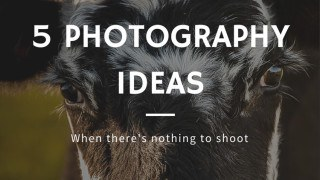 photography ideas for when there's nothing interesting to shoot