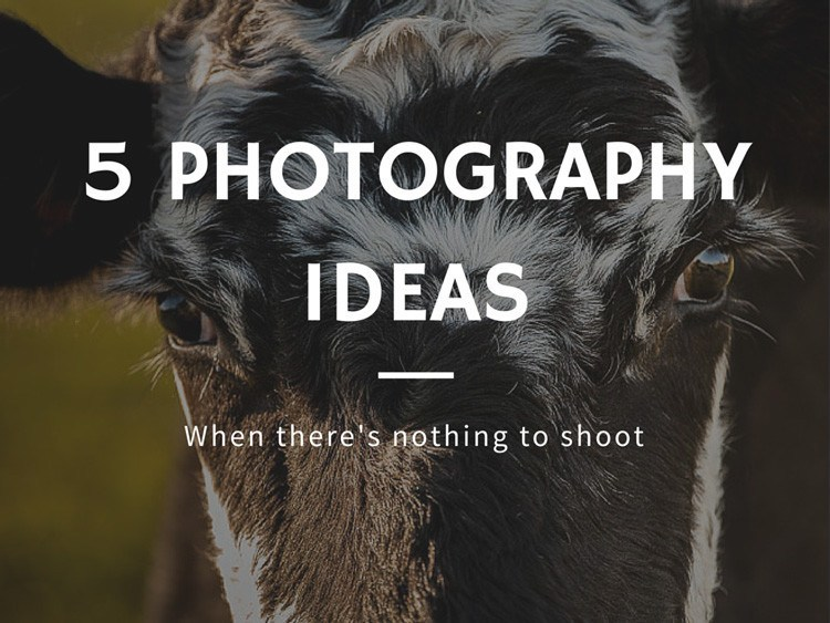 5 Photography Ideas for When There's Nothing Interesting to Shoot