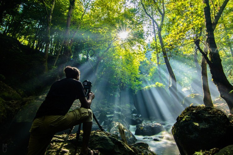 A Ray of Hope – 24 Stunning Sunlight Images to Brighten Your Day