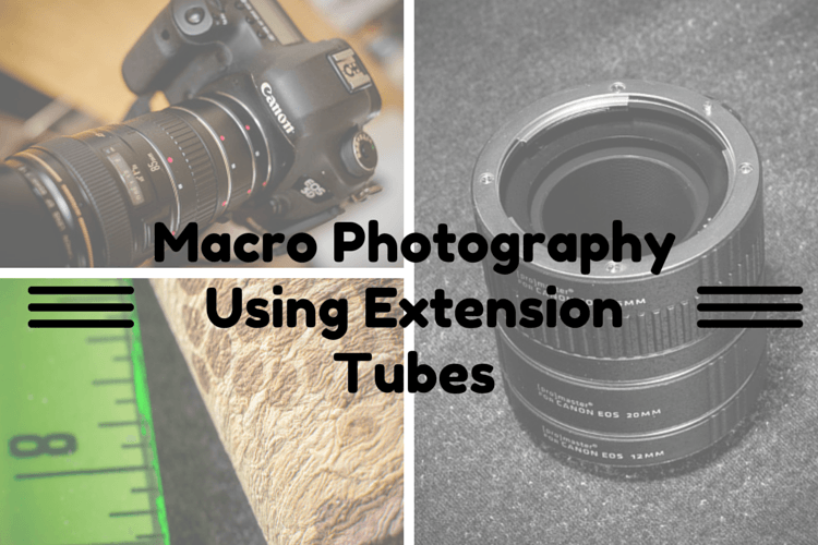How to Use Extension Tubes for Macro Photography