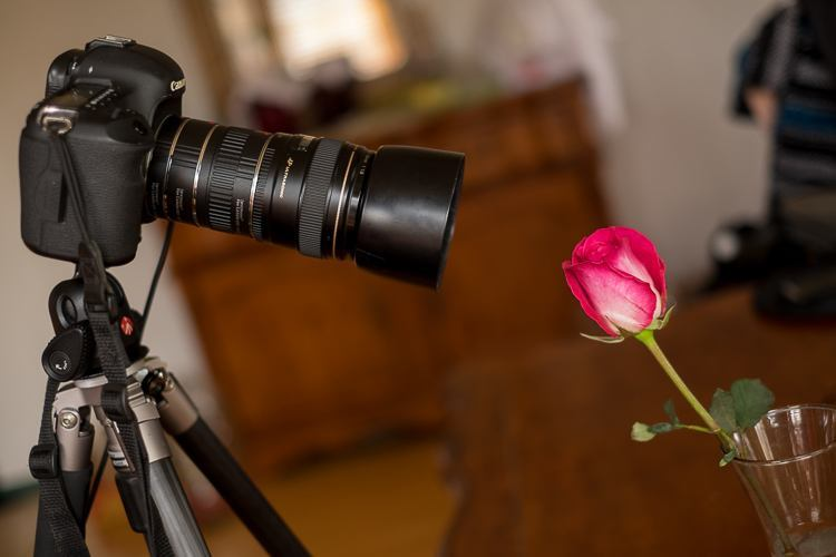 Macro photography extension tubes 750px 06