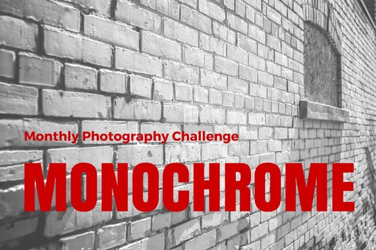 Photography Challenge – Shoot in Monochrome Learn to See Light