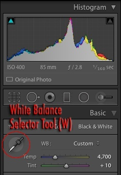 Custom white balance selector tool