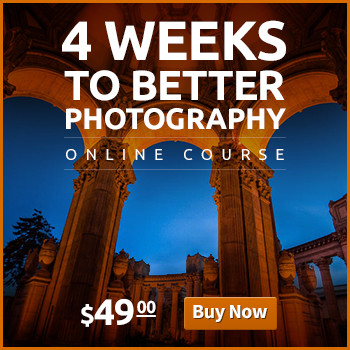Banner: 4 weeks to better photography a
