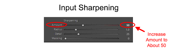 Input Sharpening graphic - showing Lightroom sharpening controls