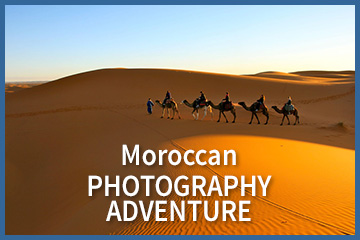 Photo Tours & Workshops | Morocco, India, Vietnam, Myanmar, Mexico
