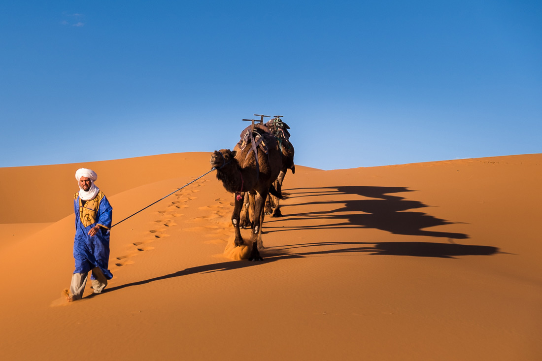Berber walks his camel across the desert creating shadows in the sand