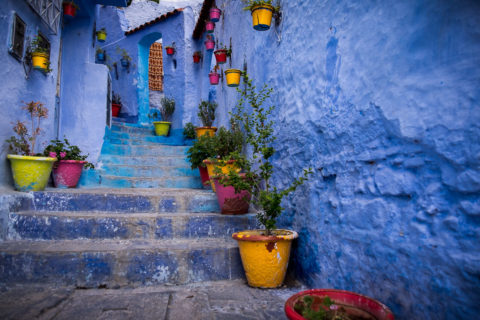 a stairway along the sidewalk in the blue city is lined with colorful plant pots