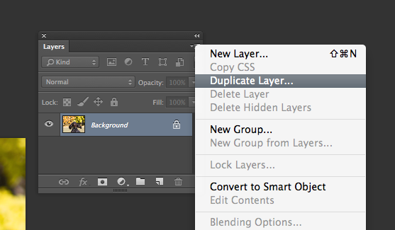 duplicate layer screenshot