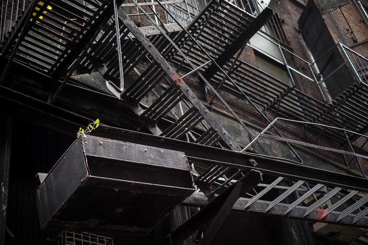 nyc-photowalk-750px-05