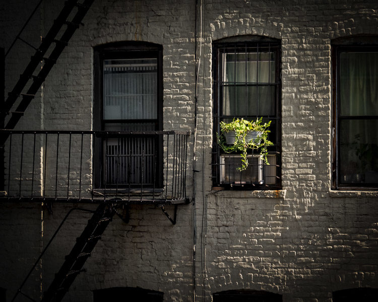 This was taken from the window of the apartment I stayed at in the East Village (thanks Airbnb). I saw the light skimming across the bricks and further enhanced it in processing.