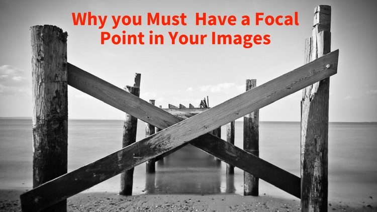 Why you Must Have a Focal Point in Your Images