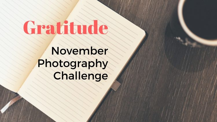 Gratitude – November Photography Challenge