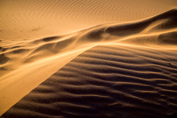 Color shot of sand dunes in the Sahara desert. This image works well in both color and black and white.