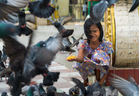 YANGON, MYANMAR: Happy girl playing with pigeons in the streets of Yangon.