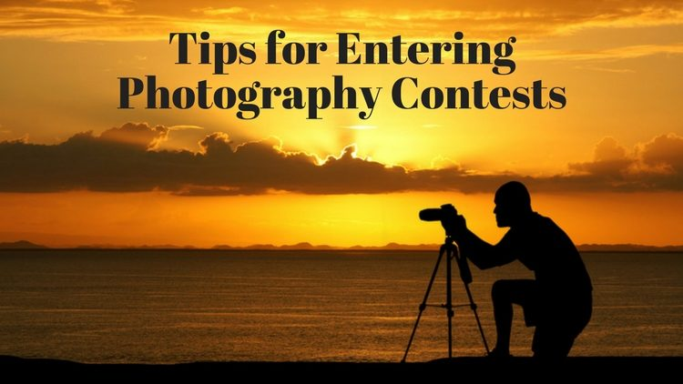 Tips for Entering Photography Contests