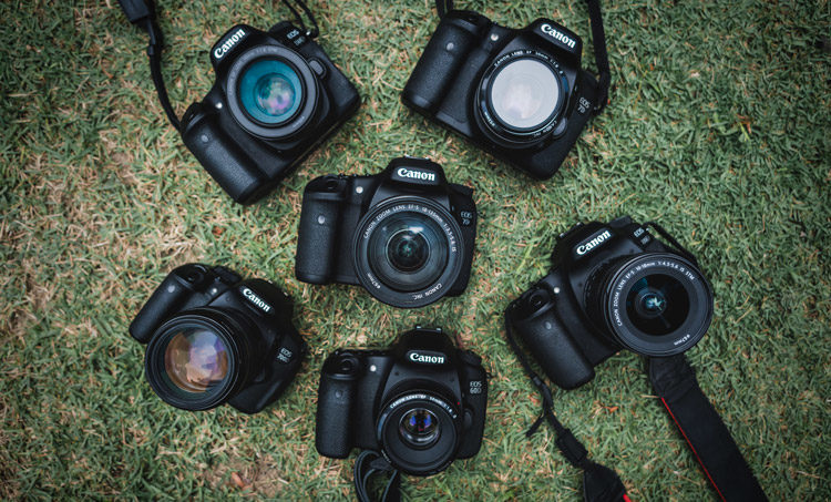 the best digital camera brand might be one your friends are using allowing you to share lenses