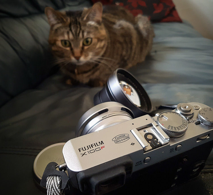 fuji x100f review photo showing camera and a cat
