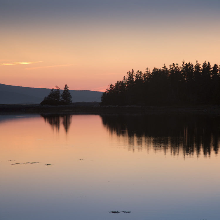 trees are reflected in the water while the sun sets behind the mountains