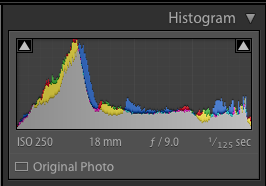 camera histogram for the waterfront image above