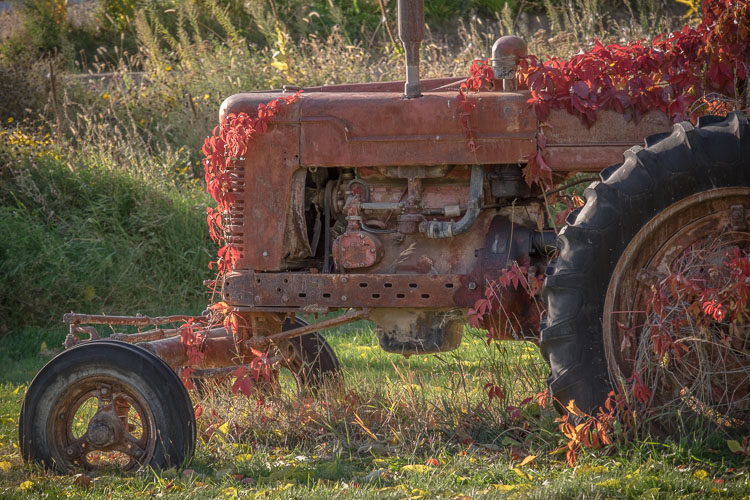 Photo of an old tractor covered in vines looks flat when shadows removed