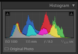 the camera histogram for the photo above showing low contrast