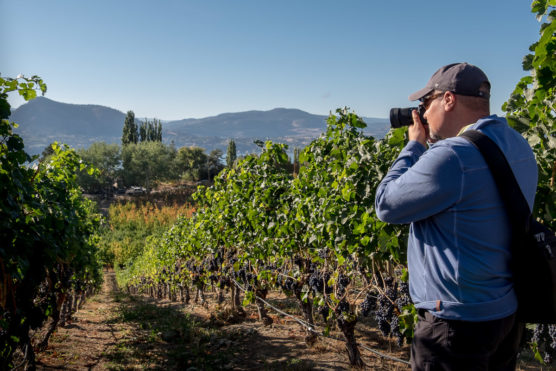 photography workshop student getting some shots of the winery grapes and landscape behind