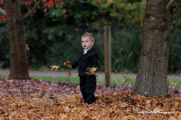 young boy having his portrait taken while playing in the leaves on a fall day