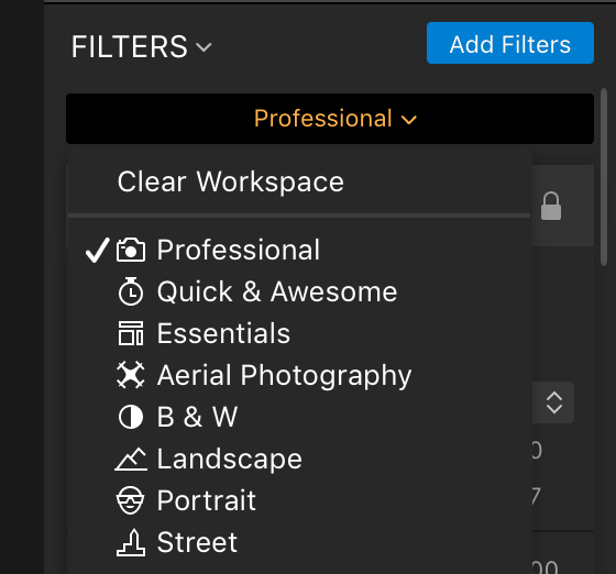 Luminar photo editor software filter panel screenshot
