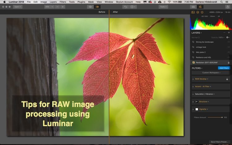 How to Process Raw Files Quickly and Easily With Luminar