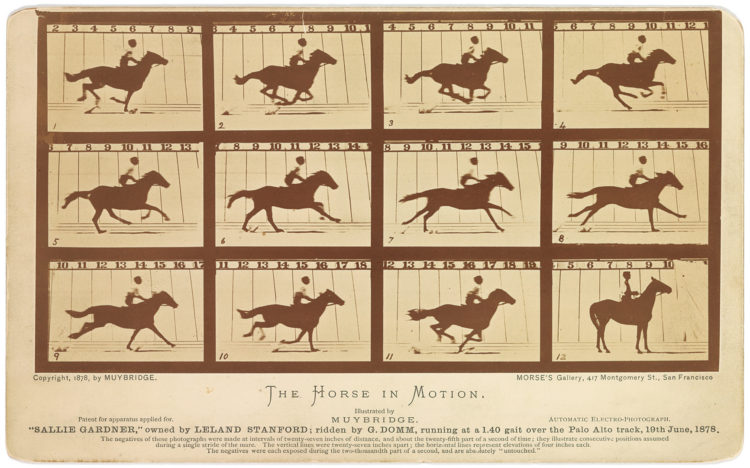 Still motion photo of a horse in motion by Eadweard Muybridge, taken in 1878