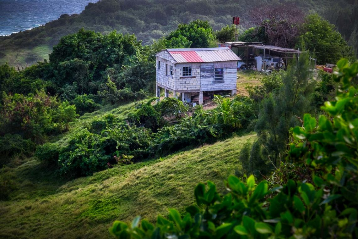 Photography Workshop in Barbados