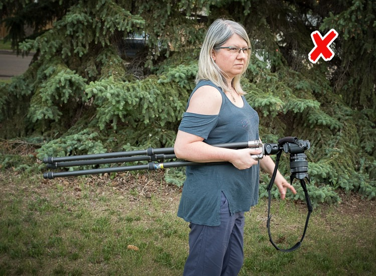 the wrong way to carry your camera tripod, with the legs extended and behind you.