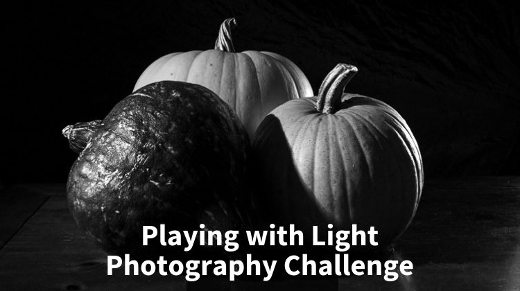 Playing with Light – Photography Challenge