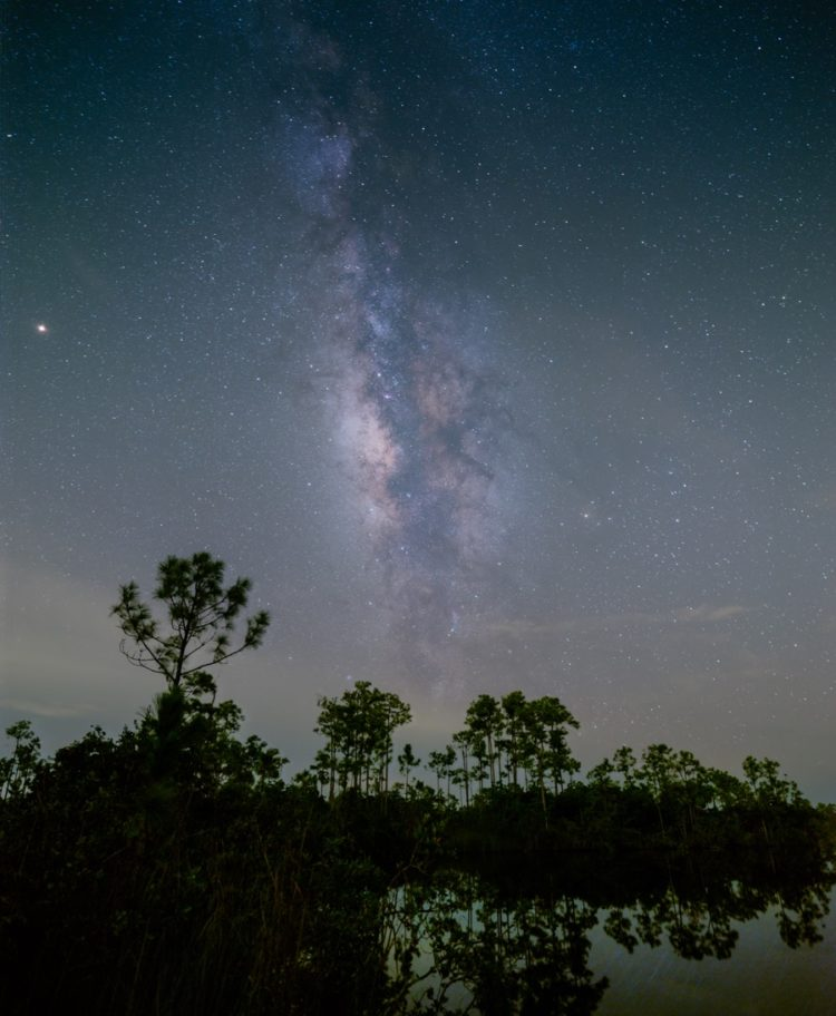 my best shot of the milky way over the florida everglades was taken when I was least comfortable