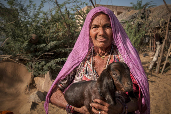 Indian woman and her goat on the side of the road