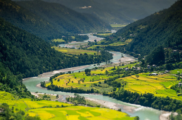 Various colors of green in this Bhutan river valley.