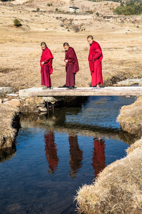 3 monks in red robes cross a river on a bridge and see their reflection in the water