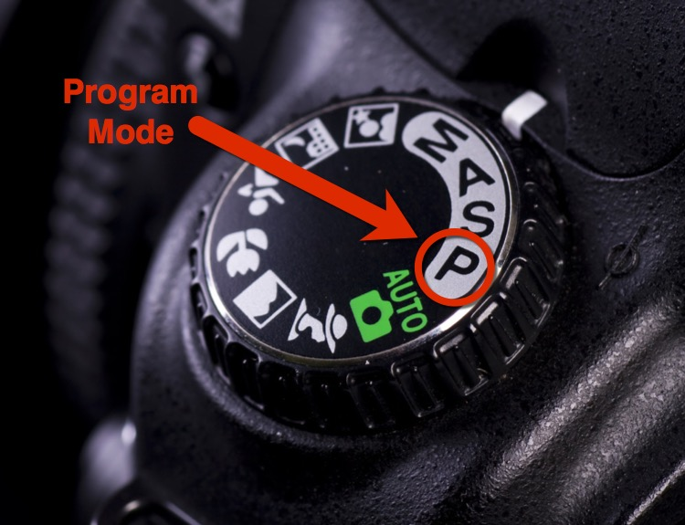Close up of dial with Program mode selected and indicated with an arrow